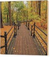 Canadian Autumnal Walkway Wood Print
