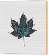 Canadian Diversity Maple Leaf Wood Print