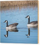 Canadian Geese Couple Wood Print