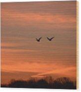 Canadian Geese Morning Flight Wood Print