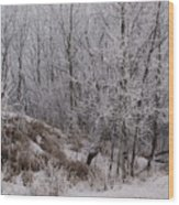 Canadian Ice Fog  Wood Print
