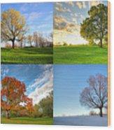 Canadian Seasons Wood Print by Mircea Costina Photography