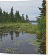 Canadian Shield Wood Print