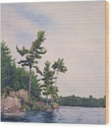 Canadian Shield Sculpture No. 2 Wood Print