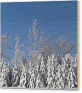 Canadian Winter Panorama Foster Quebec Wood Print
