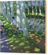 Canal Du Midi France Wood Print