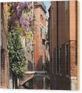 Canal In Venice With Flowers Wood Print