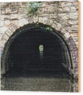 Canal Tunnel 2 Wood Print