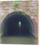 Canal Tunnel 3 Wood Print