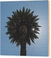 Date Palm Starburst Wood Print