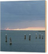 Canaveral Sunset Wood Print