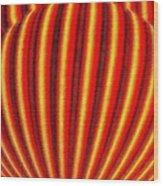 Candid Color 9 Wood Print