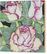 Candy Cane Roses Wood Print