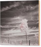 Candy Cotton Dream Wood Print
