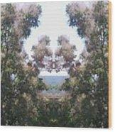 Candy Floss Greek Bush Wood Print