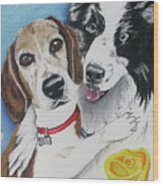 Canine Friends Wood Print