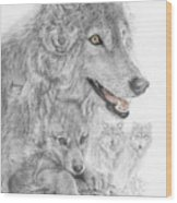Canis Lupus V The Grey Wolf Of The Americas - The Recovery  Wood Print