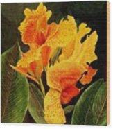 Canna Lilies Wood Print by Vickie Voelz