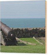 Cannon Wood Print