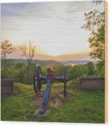 Cannon At Fort Boreman Wood Print