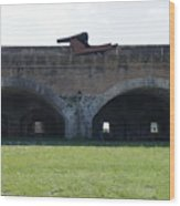 Cannon At Fort Pickens Wood Print