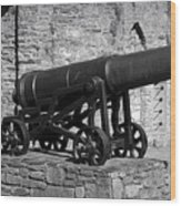 Cannon At Macroom Castle Ireland Wood Print