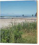 Cannon Beach And Purple Bloom Wood Print