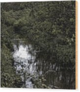 Cannon Beach Creek Wood Print