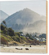 Cannon Beach Oceanfront Vacation Homes Wood Print