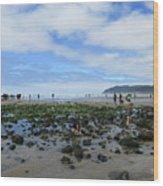 Cannon Beach Tide Pools Wood Print