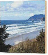 Cannon Beach Vista Wood Print
