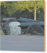 Cannons At Shiloh Wood Print