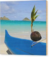 Canoe And Coconut Wood Print
