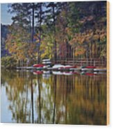 Canoe Lake Wood Print