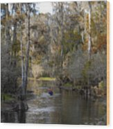 Canoeing In Florida Wood Print