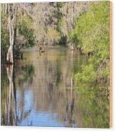 Canoeing On The Hillsborough River Wood Print by Carol Groenen