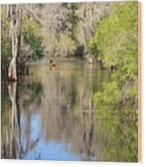 Canoing On Hillsborough River Wood Print