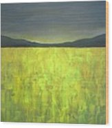 Canola Fields N05 Wood Print