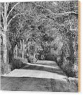 Canopy Clay Road Wood Print