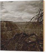 Canyon Black And White Wood Print