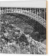 Canyon Bridge Wood Print