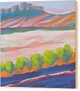 Canyon Dreams 16 Wood Print