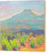 Canyon Dreams 19 Padernal Wood Print