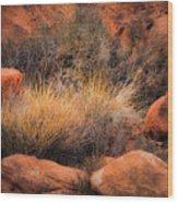 Canyon Grasses Wood Print