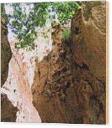 Canyon New Mexiico Wood Print