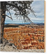 Canyon Overlook Wood Print