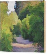 Canyon Path IIi Painterly Wood Print
