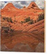 Canyon Reflections At Yant Flat Wood Print