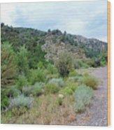 Canyon Road Wood Print