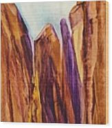 Canyon Splendor Wood Print
